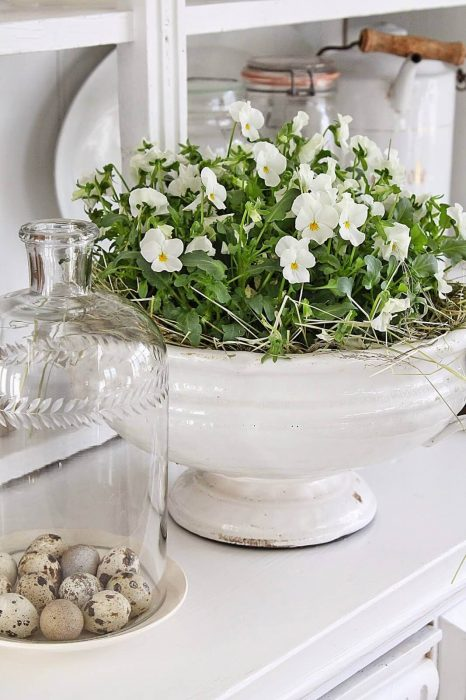 French Country Decor Ideas - White Violas Planted in Antique Ceramic Dish - Cabritonyc.com