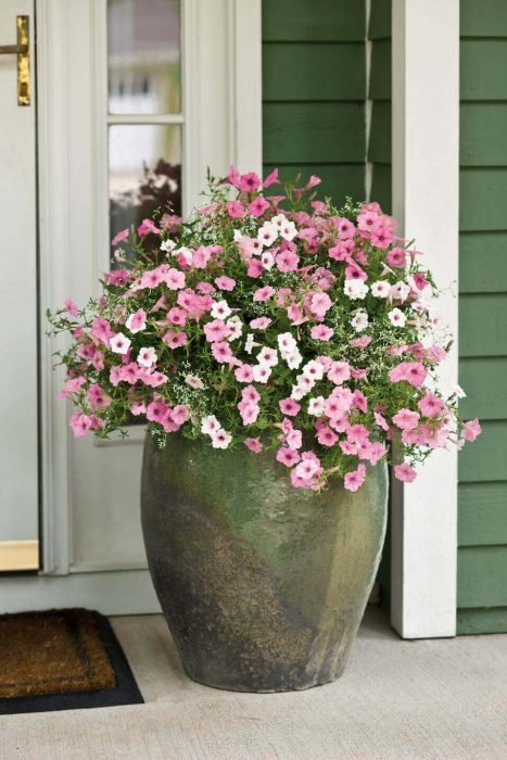Front Door Flower Pots Ideas - Giant Clay Front Door Flower Pot Design - Cabritonyc.com