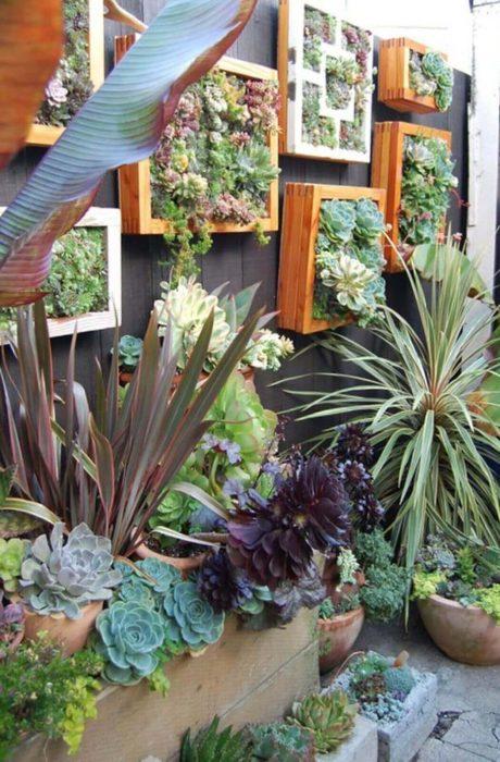 Backyard Landscaping Ideas - A Live Wall - Cabritonyc.com