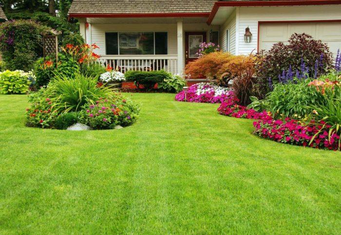 Backyard Landscaping Ideas - Mountains of Plants - Cabritonyc.com