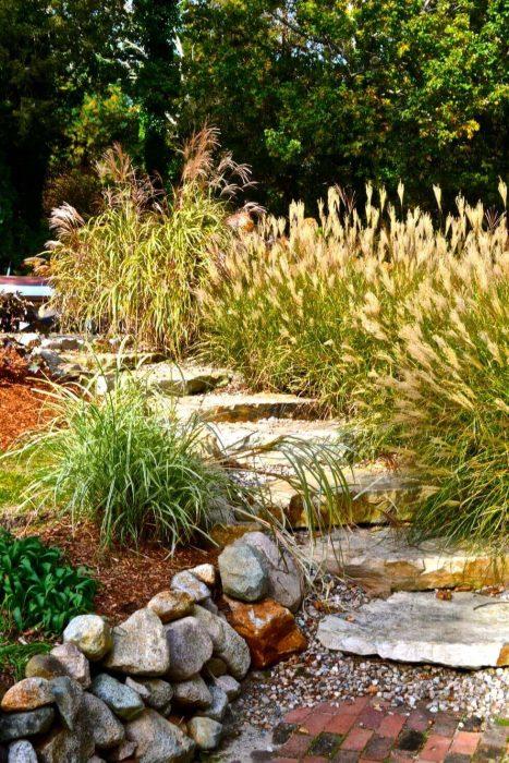 Backyard Landscaping Ideas - Plant Climate-Specific Grass - Cabritonyc.com