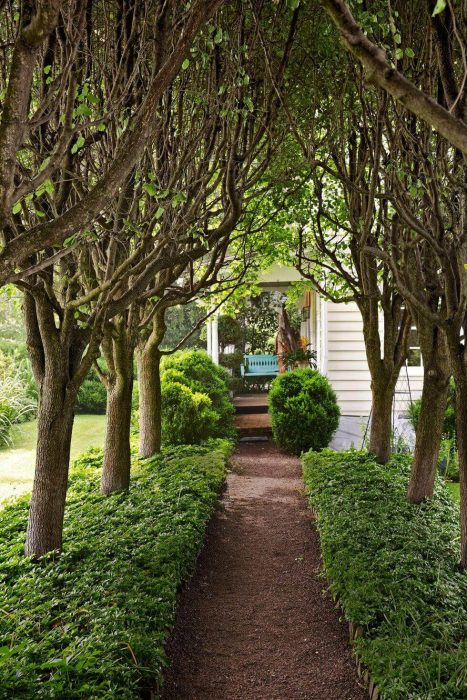 Backyard Landscaping Ideas - Make an Entrance - Cabritonyc.com
