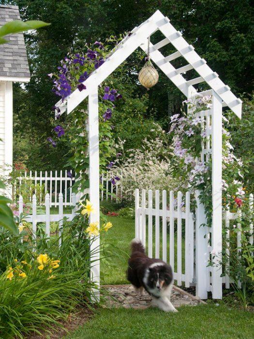 Backyard Landscaping Ideas - Fence in Fido - Cabritonyc.com